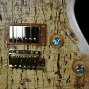 barnyard boy from RH Custom Guitars